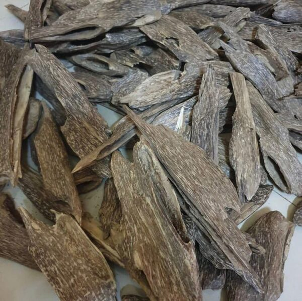 Agarwood Chips Oud Chips   Grade A++